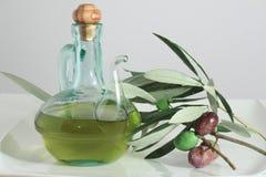 Oliwa z oliwek i oliwki Zdjęcia Royalty Free