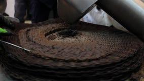 Oliwa z oliwek młyn Pracownicy produkują czystego oliwa z oliwek zdjęcie wideo