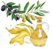 Oliwa z oliwek w butelce Pluśnięcie olej odosobniony akwarela ja ilustracja wektor