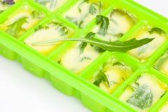 Oliwa z oliwek z ziele i pikantność Fotografia Stock