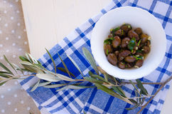 Oliwki i gałązka oliwna Zdjęcia Royalty Free