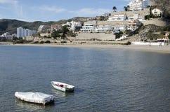 Oliwki wyrzucać na brzeg w Cullera, Hiszpania (Walencja) fotografia royalty free