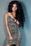 Oliwkowa dziewczyna z długie włosy Fotografia Stock