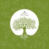 Oliwna etykietka i loga projekt Zdjęcia Royalty Free