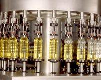 oliwna produkcja Obraz Stock