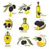 Oliwne owoc z liśćmi i nafcianymi butelkami Obraz Royalty Free