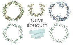Oliwnego bukiet akwareli skutka kwiecista ilustracja z gałązka oliwna wianku okręgu kształtem i faborek na bielu ilustracji