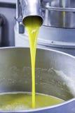 Oliwny żniwo zdjęcie stock