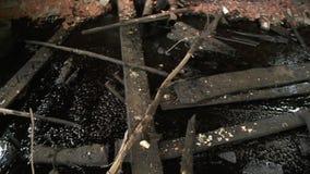 Olja återstår i övergiven fabriksbyggnads- och natursikt till och med brutet fönster stock video