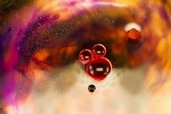 Olja, bevattna, färgpulver- och maskrosstycken Royaltyfri Fotografi