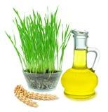 olja för illustrationen för bakgrundsdroppbakterien stylized vetewhite Royaltyfri Bild