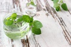 Olja för ny mintkaramell i flaska på träbräden Fotografering för Bildbyråer
