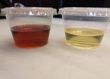 Olja och vinäger i den lilla italienareResturant för plast- behållare dressingen royaltyfri foto
