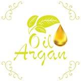 Olje- droppe, olje- skönhetsmedel för Argan som faller från leef med garneringbeståndsdelar på vit bakgrund Royaltyfri Foto