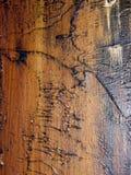 Olje- målarfärg för textur på kanfas Royaltyfri Bild