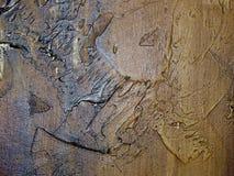 Olje- målarfärg för textur på kanfas med solljus Arkivbild