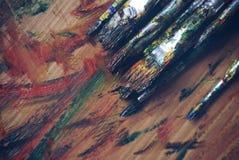 Olje- målarfärger, borstar och konstpalett på det trä geggor av målar i palett med 2 borstar bredvid paletten Arkivbilder