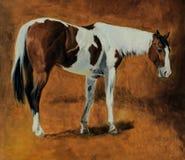 Olje- målning för häst Fotografering för Bildbyråer
