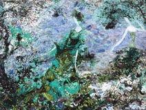 Olje- målning för textur vara upphovsman till Roman Nogin, samtal för ` s för serie`-kvinnor ` version för författare` s av färg Arkivfoto