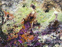 Olje- målning för textur vara upphovsman till Roman Nogin, samtal för ` s för serie`-kvinnor ` version för författare` s av färg Arkivbild
