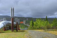 Olje- pipeline Royaltyfria Bilder