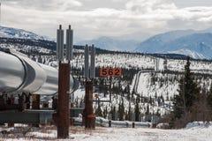 Olje- rörledning i vildmark Royaltyfria Foton
