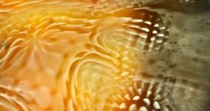 Olje- textur i vattnet lager videofilmer