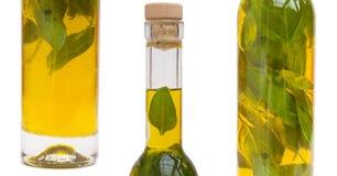 oljeolivgrön royaltyfri bild