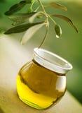 oljeolivgrön arkivfoto