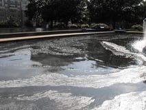 Oljig förorening i ett damm Fotografering för Bildbyråer