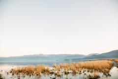 Olkhon的草甸 免版税库存照片