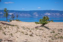 Olkhon Island Royalty Free Stock Images