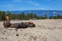 Olkhon Island Stock Photography