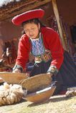 Ollantaytambo, Перу - подготовка красок альпаки inca традиции стоковые фото