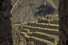 Ollantaytambo fördärvar Cuzco Peru Royaltyfria Foton