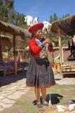 Ollantaytambo, Pérou - préparation des colorants d'alpaga Inca de tradition photographie stock