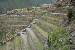 Ollantaytambo, vecchia fortezza nella valle sacra, Perù di inca Immagini Stock