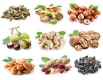?ollection van rijpe noten en zaden. stock foto's