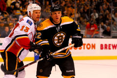 Olli Jokinen -- Shawn Thornton (NHL Hockey) Royalty Free Stock Images