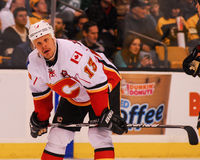 Ollie Jokinen Calgary Flames Royalty Free Stock Images