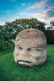 Olmec kolossalt huvud i staden av La Venta, tabasco Arkivfoto