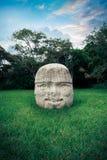 Olmec kolossalt huvud i staden av La Venta, tabasco Fotografering för Bildbyråer