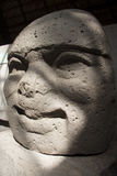 Olmec kultura losu angeles Venta Villahermosa Tabasco Meksyk archeologia fotografia royalty free