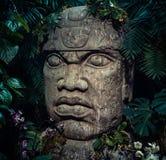 Olmec rzeźba rzeźbiąca od kamienia Duża kamień głowy statua w dżungli obrazy stock