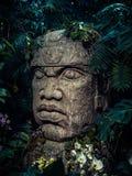 Olmec rzeźba rzeźbiąca od kamienia Duża kamień głowy statua w dżungli fotografia royalty free