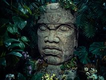 Olmec sculpture carved from stone. Big stone head statue in a jungle Stock Photos