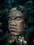 Olmec sculpture carved from stone. Big stone head statue in a jungle Royalty Free Stock Photography