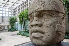 Olmec stone head. Huge magestic Olcem culture ancient sculpture head. Mexican prehispanic era in the territory of Veracruz. Ancient Mexican civilization icon Stock Photos