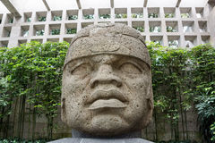 Olmec stone head. Huge magestic Olcem culture ancient sculpture head. Mexican prehispanic era in the territory of Veracruz. Ancient Mexican civilization icon Royalty Free Stock Image