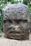 Olmec, Tabasco, Villahermosa, Meksyk, archeologia, turystyka obraz royalty free